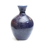 Blue Speckled Bottle