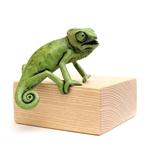 Chameleon Agape  9/100