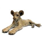 Lion Cub Alert
